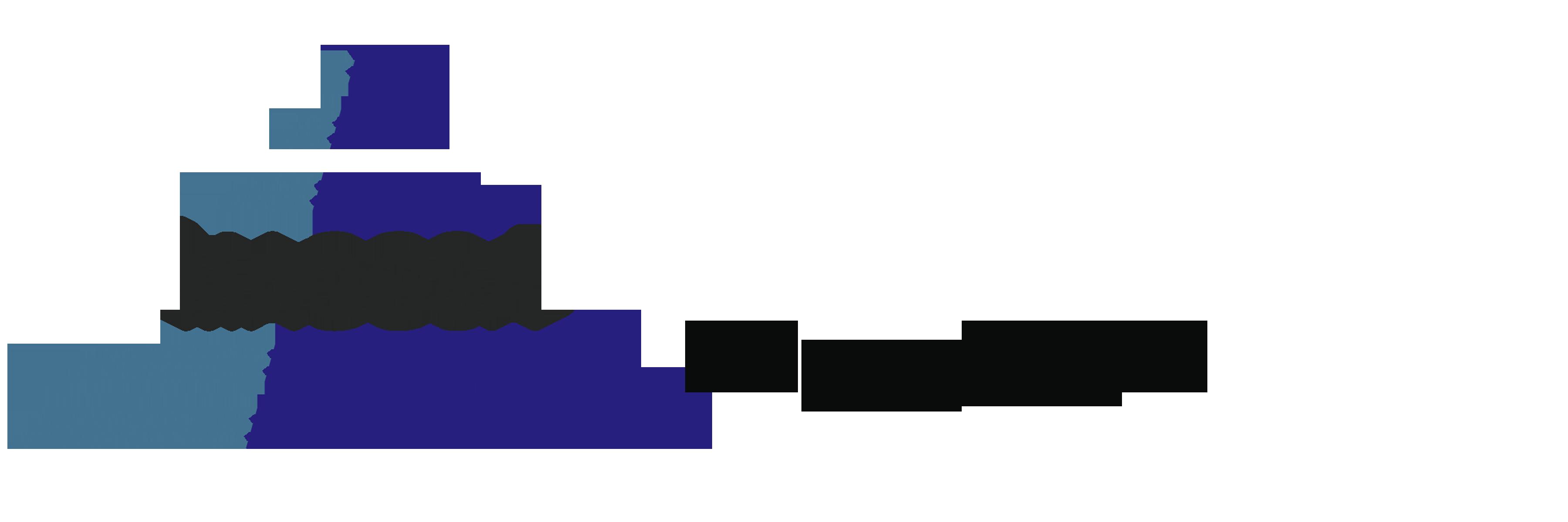Maggsa Group